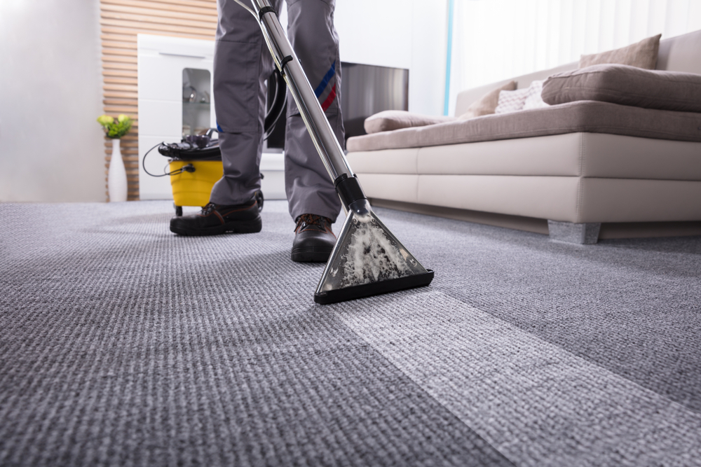 Steam or Dry Carpet Cleaning Services